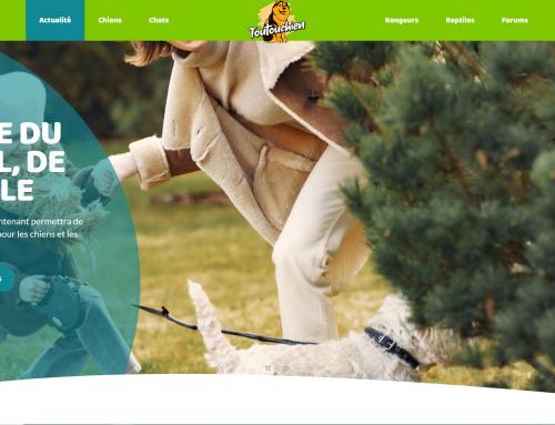 Site web ToutouChien